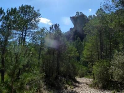 Hoz del Río Escabas - Serranía de Cuenca (Senderismo refrescante);excursion sierra madrid rutas de